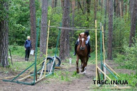 Інтерв'ю з Лесею Гордієнко щодо першого етапу кінних змагань 2016 у с. Бобриця