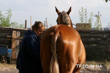 TREC 2016.09.10-11.Ветконтроль. Фото Марии Кравец.
