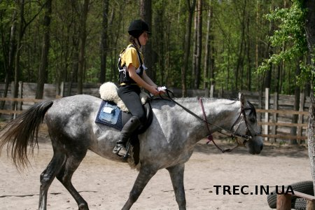 TREC-UA 2017.05.07. Контроль аллюров и ПП. Фото.