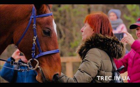 Видеообзор семинара по Working Equitation с госпожой Валерией Эммс в клубе Arion Endurance Stables 2-3 ноября.